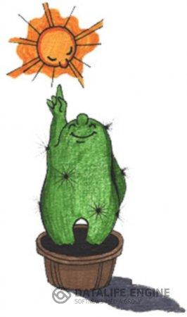 Освещение кактусов.